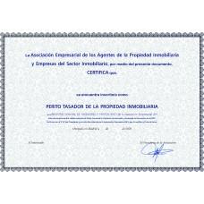 Diploma PERITO